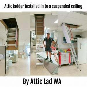 access ladder for suspended ceilings